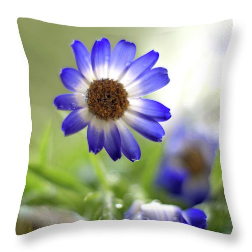 Flower Throw Pillow featuring the photograph Blue Flowers by Camelia C