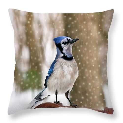 Blue Throw Pillow featuring the photograph Blue For You by Evelina Kremsdorf