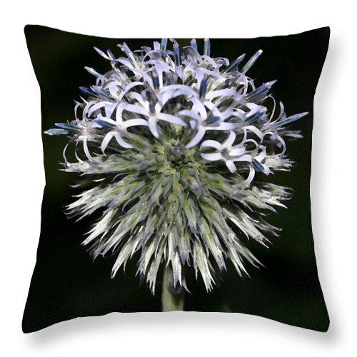 Landscape Throw Pillow featuring the photograph Blue Globe by Mary Haber