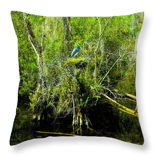 Art Throw Pillow featuring the painting Blue Heron by David Lee Thompson