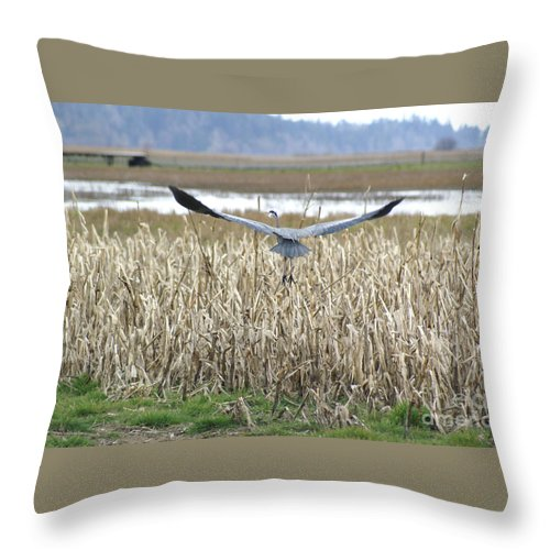 Heron Throw Pillow featuring the photograph Blue Heron Flight by Louise Magno