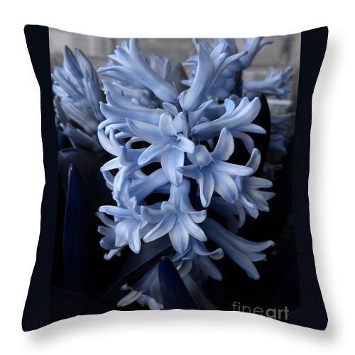 Blue Throw Pillow featuring the photograph Blue Hyacinth by Shelley Jones