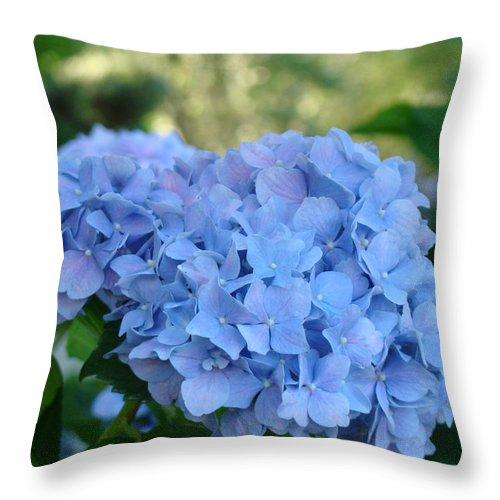 Hydrangea Throw Pillow featuring the photograph Blue Hydrangea Flower Art Prints Baslee Troutman by Baslee Troutman