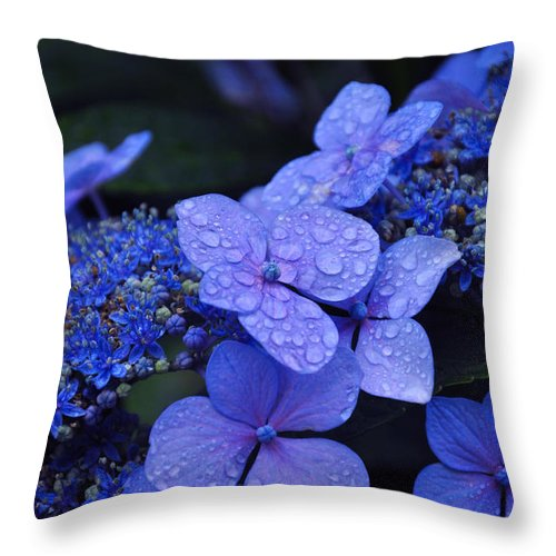 Flowers Throw Pillow featuring the photograph Blue Hydrangea by Noah Cole