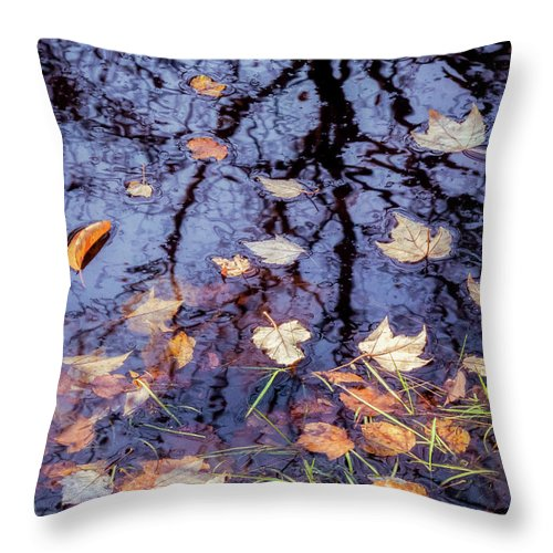 Fallen Leaves Throw Pillow featuring the photograph Blue Lagoon by Diane Moore