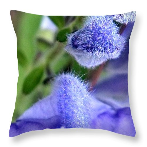 Blue Throw Pillow featuring the photograph Blue Lupine Flower 1 Of 5 Shots by Nadia Korths