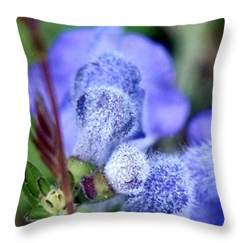 Blue Throw Pillow featuring the photograph Blue Lupine Flower - 2 Of 5 Shots by Nadia Korths