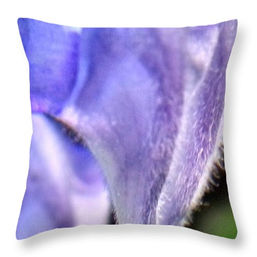 Blue Throw Pillow featuring the photograph Blue Lupine Flower - 4 Of 5 Shots by Nadia Korths
