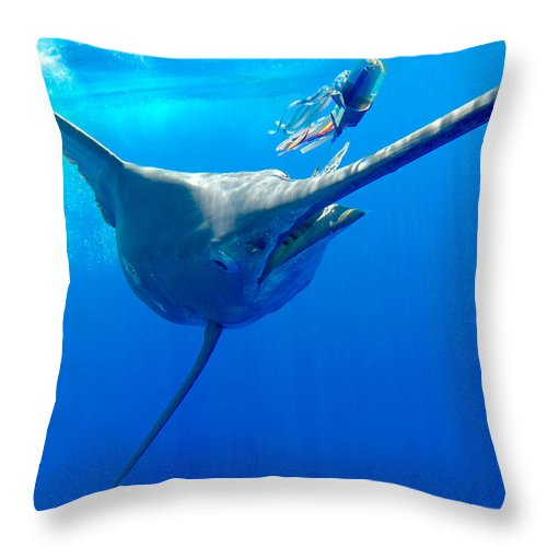 Throw Pillow featuring the photograph Blue Marlin Magic by Bryan Toney