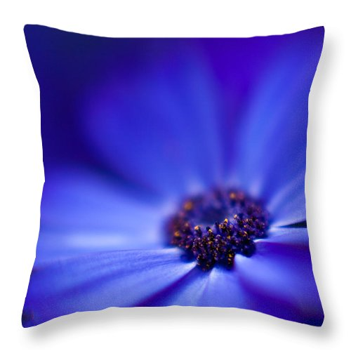 Blue Throw Pillow featuring the photograph Blue by Mike Reid