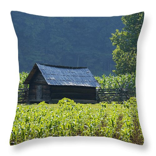 Farm Throw Pillow featuring the photograph Blue Mountain Farm by David Lee Thompson