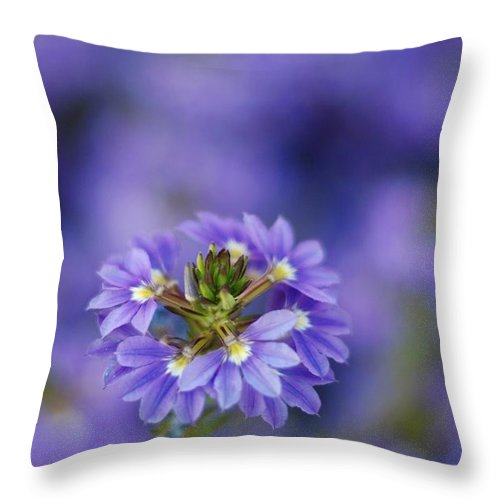 Macro Throw Pillow featuring the photograph Blue On Blue by Catherine Lau