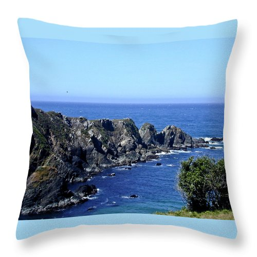 Blue Throw Pillow featuring the photograph Blue Pacific by Douglas Barnett
