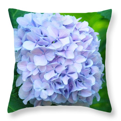 Green Throw Pillow featuring the photograph Blue Purple Hydrandea Floral Art Botanical Prints Canvas by Baslee Troutman