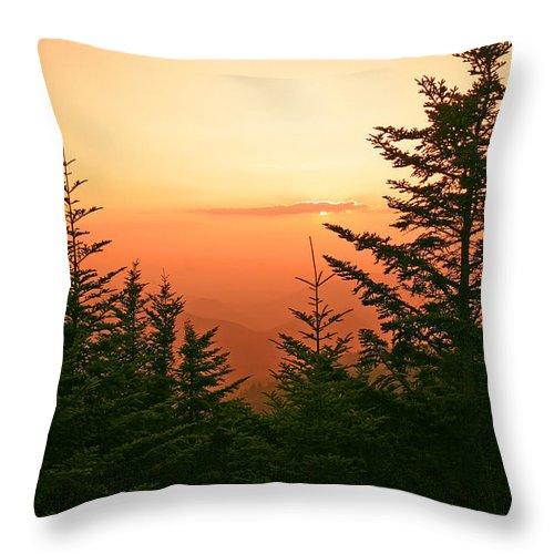 Landscape Throw Pillow featuring the photograph Blue Ridge Parkway 1 by Itai Minovitz