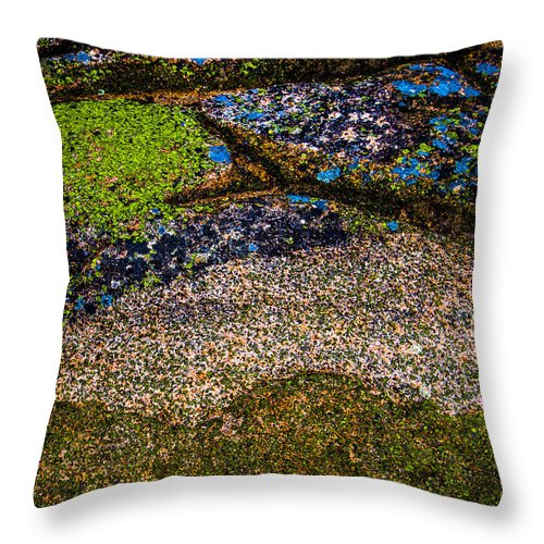 Rock Throw Pillow featuring the photograph Blue Rock by Mark Beecher