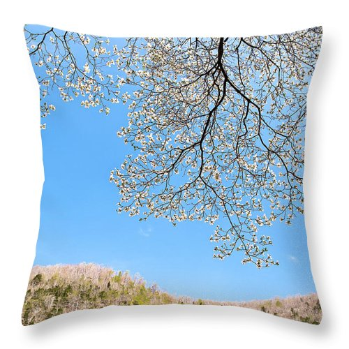 blue Sky Throw Pillow featuring the photograph Blue Skies And Dogwood by Tamyra Ayles