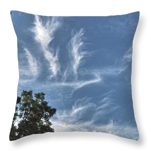 Spring Throw Pillow featuring the photograph Blue Skies by Chris Fleming