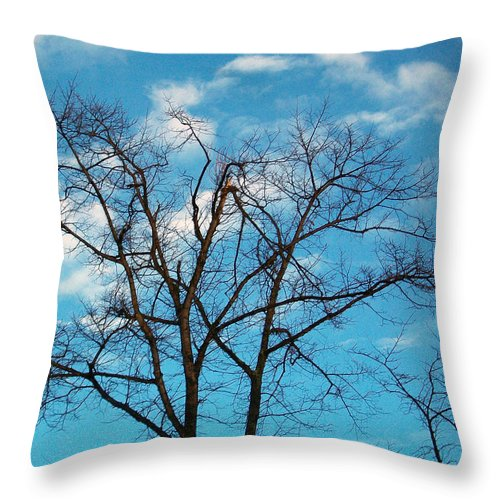 Tree Throw Pillow featuring the photograph Blue Sky by Munir Alawi