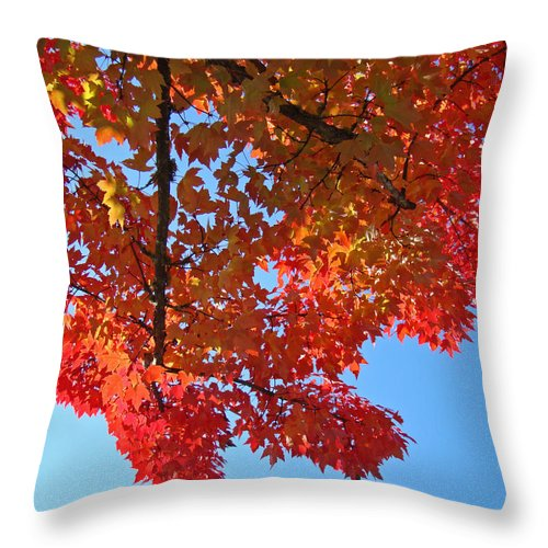 Autumn Throw Pillow featuring the photograph Blue Sky Red Autumn Leaves Sunlit Orange Baslee Troutman by Baslee Troutman