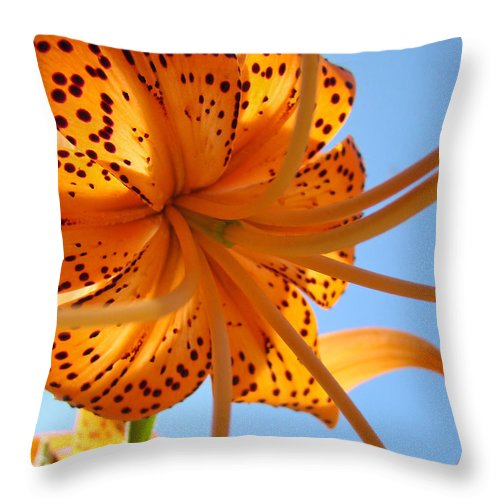 Lilies Throw Pillow featuring the photograph Blue Sky Sunshine Tiger Lily Flowers Giclee Prints Baslee Troutman by Baslee Troutman