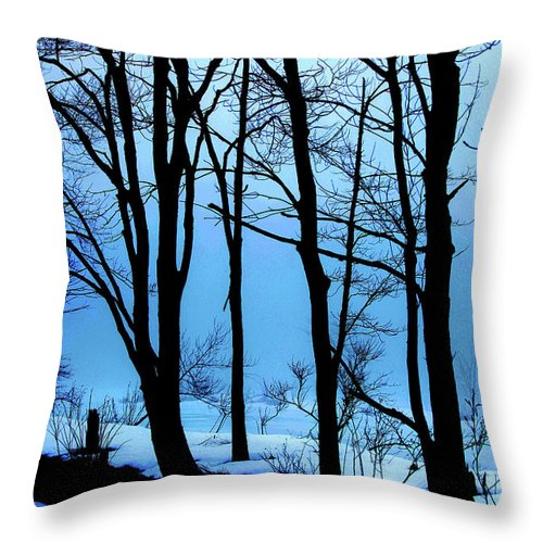Woods Throw Pillow featuring the photograph Blue Woods by Karol Livote