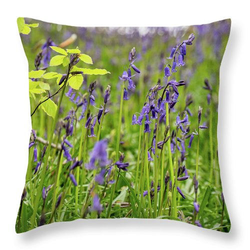 Judy Woods Throw Pillow featuring the photograph Bluebells In Judy Woods by Mike Walker