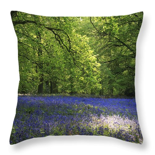 Bluebells Throw Pillow featuring the photograph Bluebells by Phil Crean