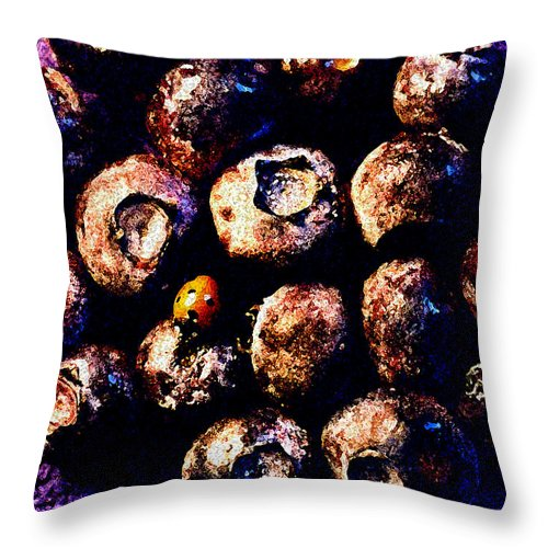 Blueberries Throw Pillow featuring the photograph Blueberries And Ladybug by Nancy Mueller