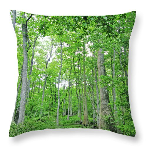 Swamp Throw Pillow featuring the digital art Blueboonet Swamp Baton Rouge La by Lizi Beard-Ward