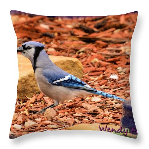 Bird Throw Pillow featuring the photograph Bluejay Profile by Wendy Fox