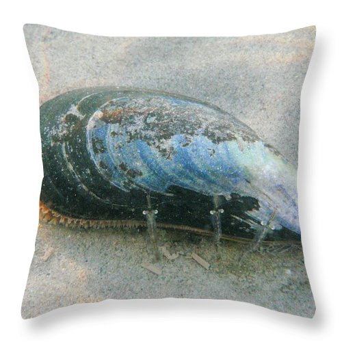 Shell Throw Pillow featuring the photograph Blues Brothers by Are Lund