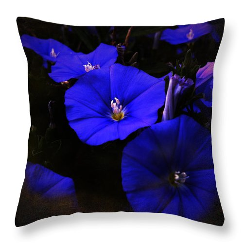 Blue Throw Pillow featuring the photograph Blues by Music of the Heart
