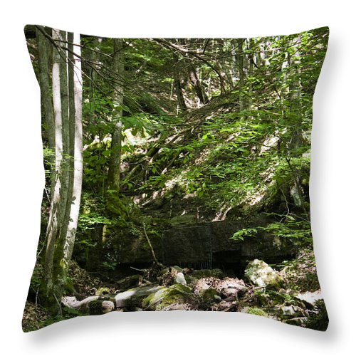 Bluestone Throw Pillow featuring the photograph Bluestone State Park Mountain Stream West Virginia by Teresa Mucha