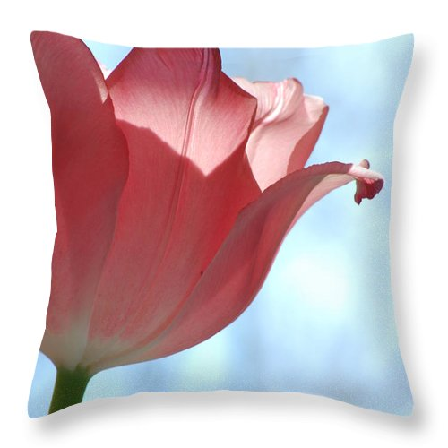 Tulip Throw Pillow featuring the photograph Blush by Michelle Hastings
