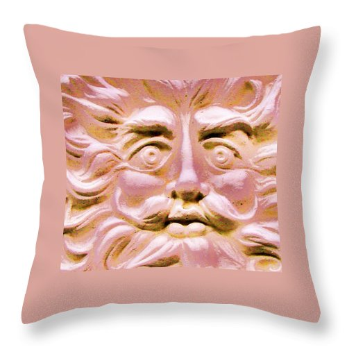 Contemporary Throw Pillow featuring the photograph Blushing Sol by Margaret Bobb