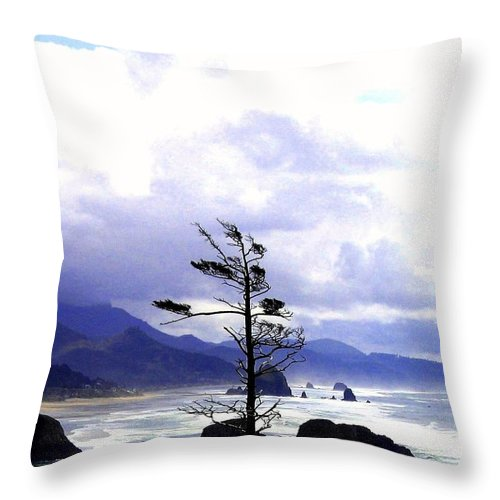 Blustery Throw Pillow featuring the photograph Blustery by Will Borden