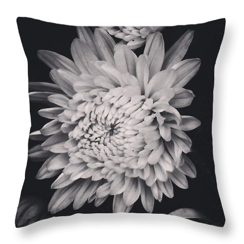 Flower Throw Pillow featuring the photograph Bnw Flora by Aly Robinson