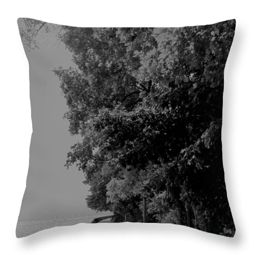 Black And White Throw Pillow featuring the photograph Boardwalk by Ian MacDonald