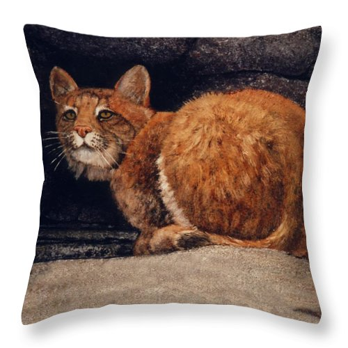 Wildlife Throw Pillow featuring the painting Bobcat On Ledge by Frank Wilson