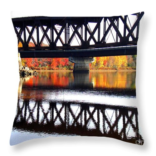Water Throw Pillow featuring the photograph Bold And Beautiful by Sybil Staples
