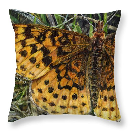 Butterfly Throw Pillow featuring the painting Boloria Bellona by Shana Rowe Jackson