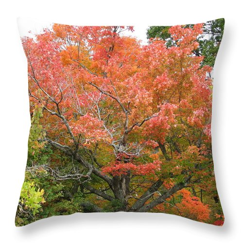 Fall Throw Pillow featuring the photograph Bonfire by Kelly Mezzapelle