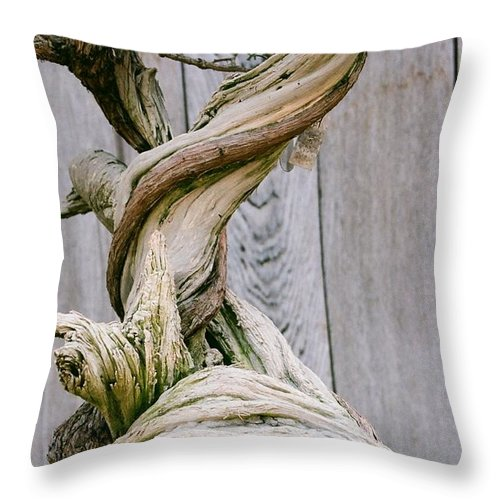 Tree Throw Pillow featuring the photograph Bonsai by Dean Triolo