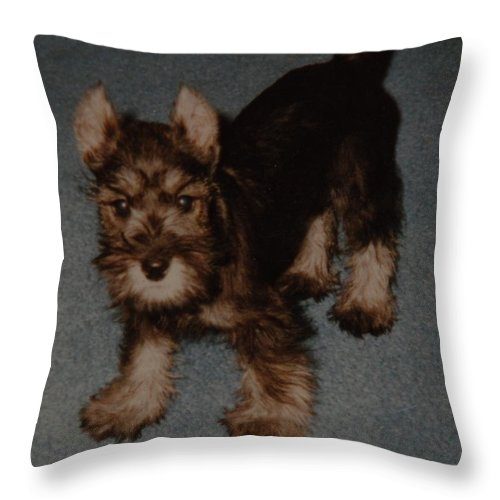 Dog Throw Pillow featuring the photograph Boo Boo by Rob Hans