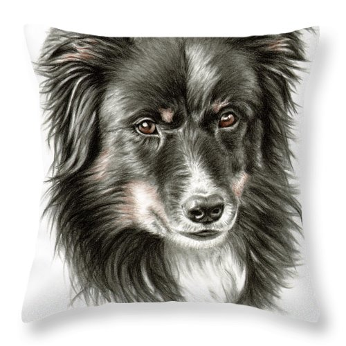 Dog Throw Pillow featuring the drawing Border Collie Portrait by Nicole Zeug