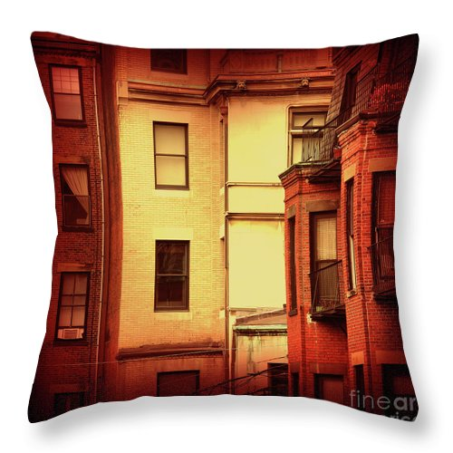 Boston Throw Pillow featuring the photograph Boston Roots by Dana DiPasquale