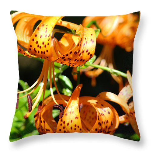 Lilies Throw Pillow featuring the photograph Botanical Art Prints Orange Tiger Lilies Master Gardener Baslee Troutman by Baslee Troutman