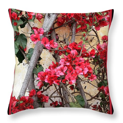 Bougainvillea Throw Pillow featuring the photograph Bougainvillea On Mission Wall - Digital Painting by Carol Groenen