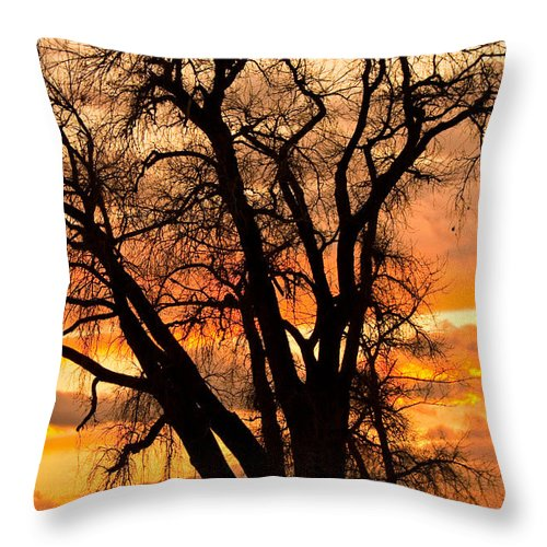 Sunsets Throw Pillow featuring the photograph Boulder County Sunset by James BO Insogna